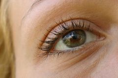 Female eye Royalty Free Stock Photography