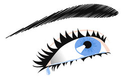 Female eye Royalty Free Stock Image