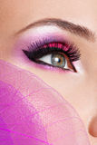 Female eye with  beautiful fashion bright pink makeup Royalty Free Stock Photo