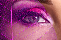 Female eye with  beautiful fashion bright pink makeup Royalty Free Stock Image