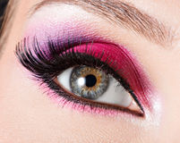 Female eye with  beautiful fashion bright pink makeup Stock Photography