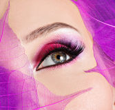 Female eye with beautiful fashion bright pink makeup. Closeup female eye with beautiful fashion bright pink makeup stock images