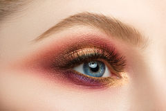 Female eye with beautiful make-up Stock Images