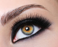 Female eye with black long eyelashes royalty free stock images