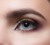 Female eye close-up. Perfect makeup and eyebrows. Beautiful gray eyes Stock Photography