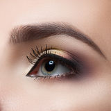 Female eye close-up. Perfect makeup and eyebrows. Beautiful gray eyes Stock Images
