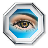 Female eye closeup in the frame. Vector. Picture. Female eye closeup in the frame. Vector Stock Images