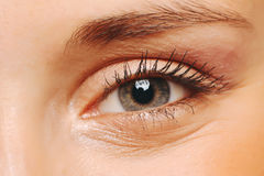 Female eye closeup. Stock Photography