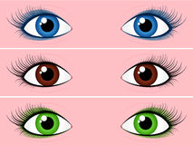 Female eye collection Stock Images