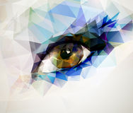 Female eye. Created from polygons Royalty Free Stock Photo