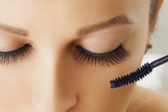 Female eye with extreme long eyelashes and brush of mascara. Make-up, cosmetics, beauty. Close up, macro stock photo