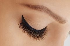 Female eye with extreme long false eyelashes and black liner. Eyelash extensions, make-up, cosmetics, beauty stock photos