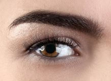 Female eye with eyelash extensions. Closeup Royalty Free Stock Photography