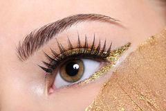 Female eye with false eyelashes and golden make-up Stock Photos