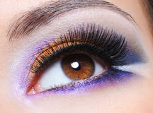 Female eye with fashion saturated make-up Royalty Free Stock Images