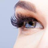 Female eye with long eyelashes Royalty Free Stock Photos