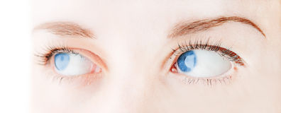 Female eye with long eyelashes Royalty Free Stock Image