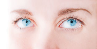 Female eye with long eyelashes Royalty Free Stock Images