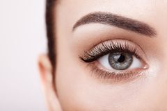 Female eye with long false eyelashes. Female Eye with Extreme Long False Eyelashes. Eyelash Extensions. Makeup, Cosmetics, Beauty. Close up, Macro royalty free stock images