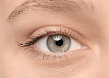Female eye with long lashes,. Closeup Stock Images