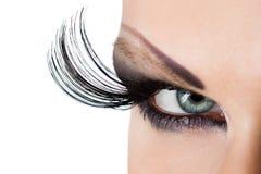 Female eye Royalty Free Stock Image