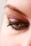 Female eye with make up Royalty Free Stock Image
