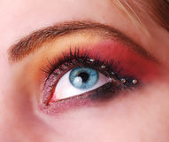 Female eye with make up Stock Images