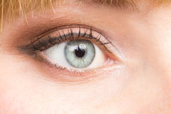 Female eye make up close up image Royalty Free Stock Images