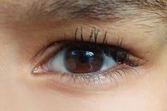 Female eye. Original graphic photo shot female eye Stock Photos