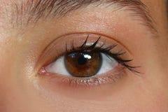 Female eye. Original graphic photo shot female eye Royalty Free Stock Images