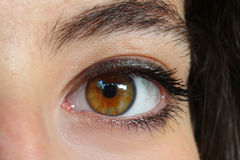 Female eye. Original graphic photo shot female eye Royalty Free Stock Image