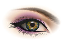 Female eye, vector. Female eye with makeup. Realistic vector image Stock Images