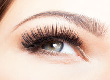 Free Female Eye With Long Eyelashes Royalty Free Stock Image - 68607646