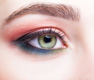 Female eye zone and brows with day makeup stock image