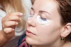 Female eyelashes dyeing with permanent blue makeup Royalty Free Stock Photo
