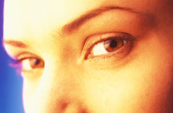 Female eyes. Close up, female  eye look in an objective of  camera Stock Photography