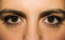 Female eyes closeup Stock Photo