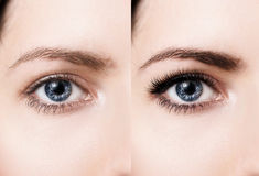 Female eyes before and after eyelash extension. Royalty Free Stock Photos