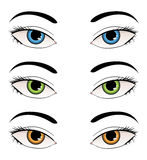 Female eyes illustration Stock Photography