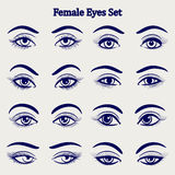 Female eyes sketch set Royalty Free Stock Images