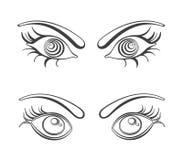 Female eyes vector illustrations Stock Photo