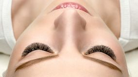 Female face with eyelash extensions, well groomed skin, top view, close up, selective focus stock photos