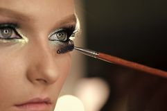Female Face. Issues affecting girls. Woman face and makeup brush applying mascara makeup on eye lashes.  Stock Photography
