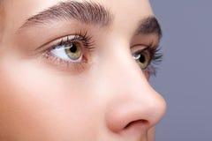 Female face makeup Stock Photo