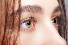 Female face makeup Royalty Free Stock Photos