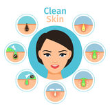 Female facial treatments illustration Stock Images