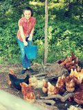Female farm worker giving feeding stuff to chickens Royalty Free Stock Photo
