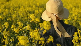 Female Farmer from Behind Walking in Oilseed Rapeseed Cultivated Agricultural Field stock video footage