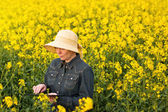 Female Farmer with Digital Tablet in Oilseed Rapeseed Cultivated Royalty Free Stock Photography