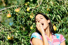 Female farmer eating fruit from pear tree Royalty Free Stock Photo
